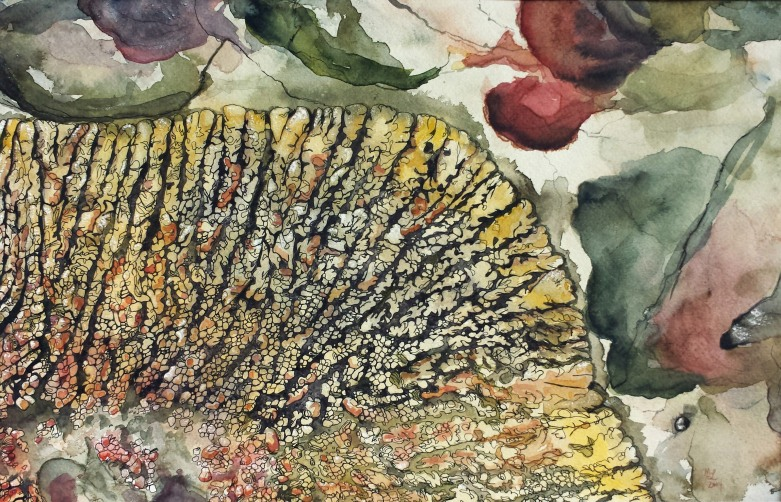Lichen, Red Rock Coulee, Alberta Badlands, 2014 Watercolor, ink, pencil on paper Based on a photo by Chris Manders